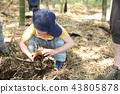 การขุดหน่อไม้ 43805878