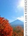 富士和秋叶 43809162