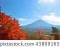 富士和秋叶 43809163