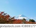 富士和秋叶 43809177