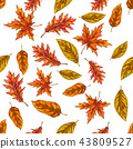 Seamless pattern with autumn leaves isolated  43809527