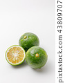 ผลไม้รสเปรี้ยวกำเนิด: จังหวัดโออิตะโชไน 43809707