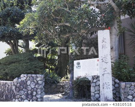 Michizuka 43810518