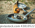 Mother hen with chicks in a frying pan 43810522