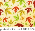 Autumn leaves vector illustration 43811724