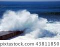 wave 43811850