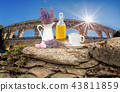 Pont du Gard with Lavender still life in Provence 43811859