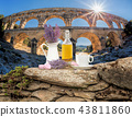Pont du Gard with Lavender still life in Provence 43811860