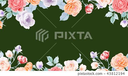 水彩鉛筆玫瑰花牡丹花和葉子 43812194