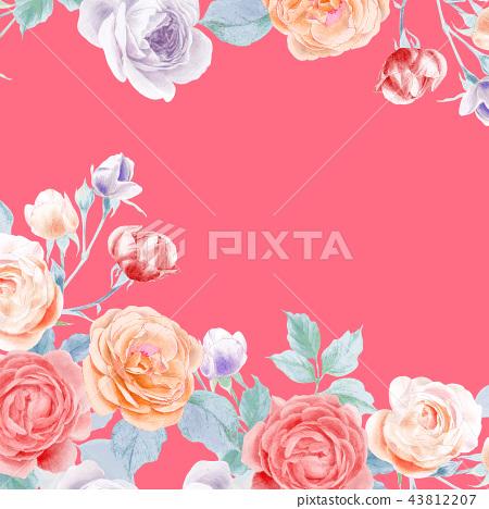 水彩鉛筆玫瑰花牡丹花和葉子 43812207