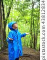 下雨 雨 多雨 43812834