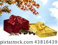선물, 보따리, 명절 43816439
