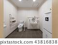 화장실 43816838