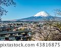 富士山 櫻花 櫻 43816875