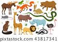 animal, set, wild 43817341