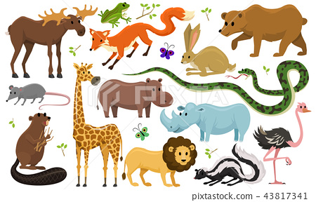 Cute animals for baby. Wild giraffe moose camel and deer, rhinoceros. hare, wolf and bear with lion 43817341