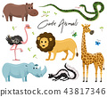 Cute animals for baby. Wild giraffe rhinoceros. ostrich and skunk. snake and hippopotamus. lion and 43817346