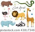 animal, wild, set 43817346