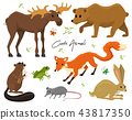 Cute animals for baby. Wild moose and deer, hare, wolf and bear. frog and fox. vintage world 43817350