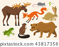 Cute animals for baby. Wild moose and deer, hare, wolf and bear. frog and fox. vintage world 43817356