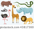 Cute animals for baby. Wild giraffe rhinoceros. ostrich and skunk. snake and hippopotamus. lion and 43817360