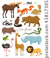 Cute animals for baby. Wild giraffe moose camel and deer, rhinoceros. hare, wolf and bear with lion 43817365