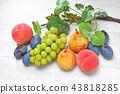 과일, 후르츠, 샤인 머스캣 43818285