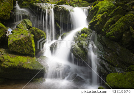 Moss and waterfall in the valley, Mossy valley 43819676