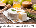 Camembert or Brie cheese 43819793