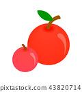 แอปเปิล,ภาพสามมิติ,3 43820714