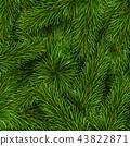 Christmas tree branches background 43822871