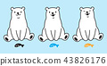 vector, polar, bear 43826176