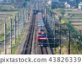东北主要线 货运列车 金太郎 43826339