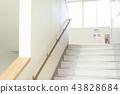 학교 이미지 (계단) 43828684