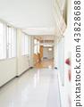 학교 이미지 (복도) 43828688