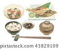 white background, japanese food, japanese cuisine 43829109