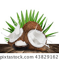 close-up of a coconuts with milk splash on white background 43829162