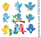 Cartoon happy birds collection set 43829603