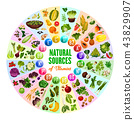 Natural vitamin, vegetarian food sources 43829907