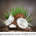close-up of a coconuts with milk splash. 43831274