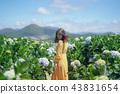 Woman in yellow dress walk in Hydrangea garden. 43831654