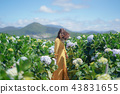 Woman in yellow dress walk in Hydrangea garden. 43831655
