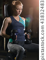 Young woman lifting the dumbbells 43832483