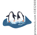 penguins on a piece of iceberg 43832669