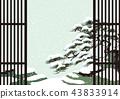 pinetree, old, pine 43833914