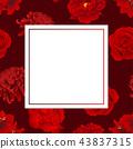 Red Rose, Chrysanthemum, Carnation Peony Amaryllis 43837315