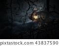Halloween mystery concept 43837590