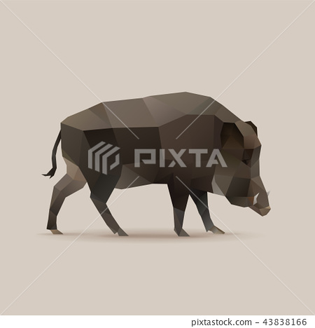 Wild boar, polygonal vector illustration 43838166