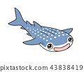 whale shark, character, grinning 43838419