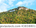Brasov city lettering on the Tampa hill 43838801